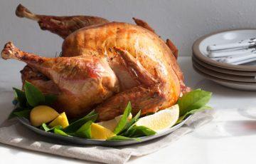 Citrus Brined Turkey recipe