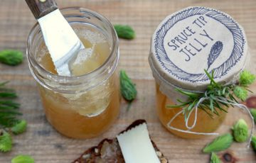 Spruce Tip Jelly recipe