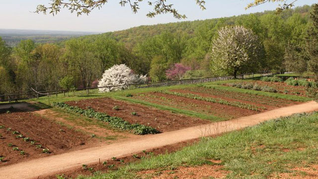 Thomas Jefferson's Monticello Gardens